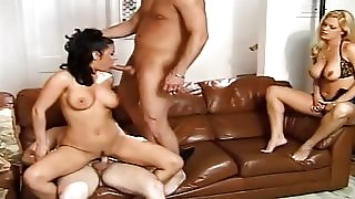 apologise, but, opinion, free latina blow job the expert